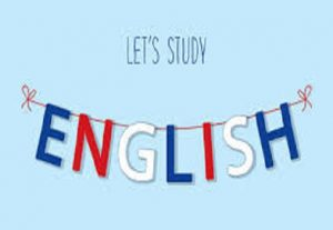 I can create and edit content in English language. I can also teach the language