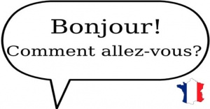 Useful french greetings and salutations bonjourg french vocabulary greetings m4hsunfo