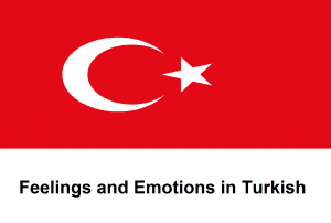 Feelings and Emotions in Turkish