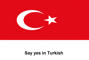 Say yes in Turkish